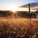 Daybreak by NinaJoan