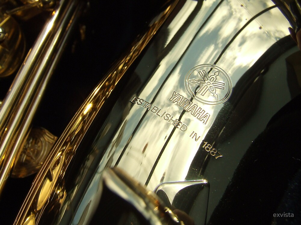 Alto Saxophone 03 by exvista