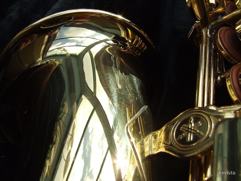 Alto Saxophone 08 by exvista