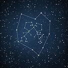 Love Constellation by Paula Belle Flores