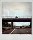 Horse on the bridge Polaroïd by laurentlesax