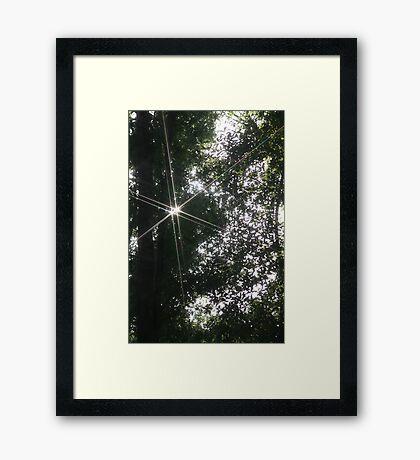 Spirited Future Framed Print