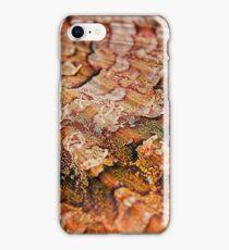Reef Art - Scorpionfish Fin iPhone Case/Skin