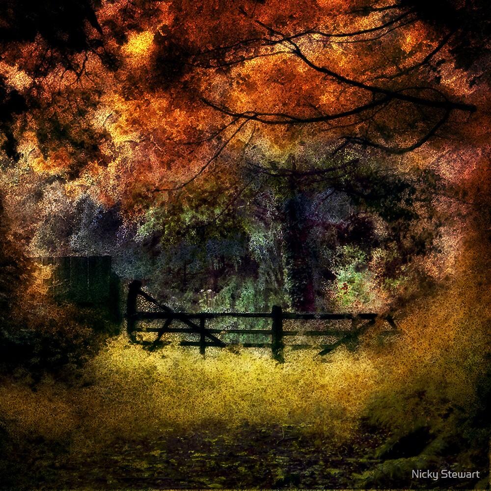 Greve De L'ecq Woods, Jersey by Nicky Stewart