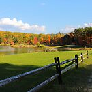 Senger Mountain Lake in the Fall by ej29