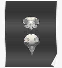 Propic: Hance Art&Design Poster