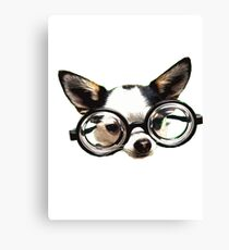 Funny Chihuaua Canvas Print