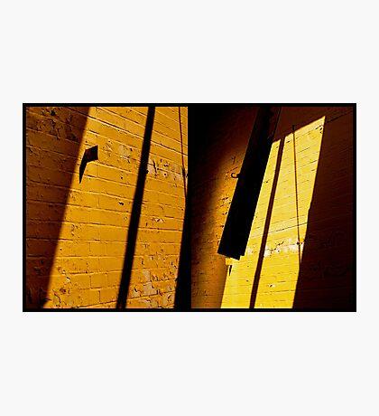West Park - Yellow Photographic Print
