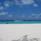 I have the whole beach to myself by abryant