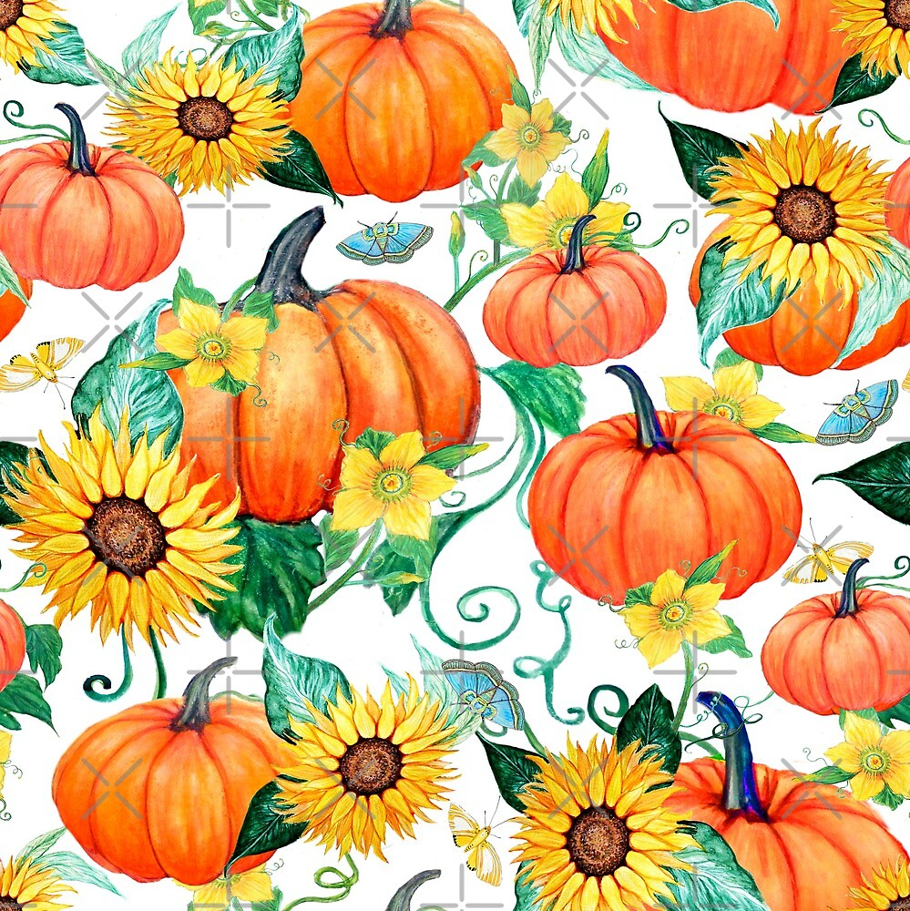 Pumpkin and Sunflower watercolor with moths by MagentaRose