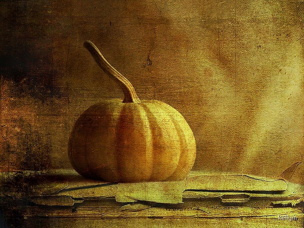 Gourd by kellym