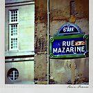 Mazarine Polaroïd by laurentlesax
