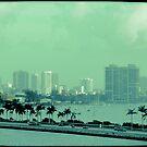Miami vice  by Elizabeth Rodriguez