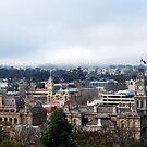 Misty Morning in Bendigo by Lozzar Landscape