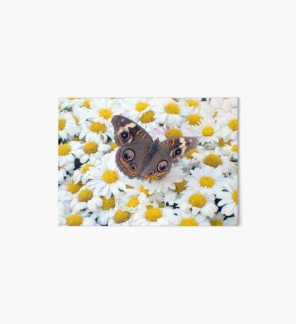 Autumn Wings 1 Art Board