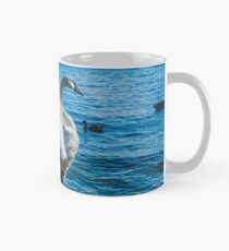 Spread Your Wings. Trumpeter Swan Photograph Classic Mug