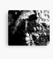 One Mans Hell - Illustration in human hair Canvas Print