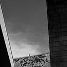 Cloud Surfin by Keith Poynton