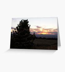 Medicine Bow Christmas Tree #3 Greeting Card
