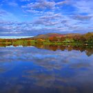 Mirror Image Of The Carp Lake by Sandra Cockayne