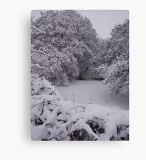 The frozen pond Canvas Print