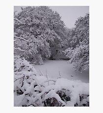The frozen pond Photographic Print
