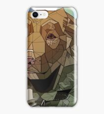 Nova Scotia Geometric iPhone Case/Skin