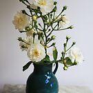 Rose  by Peter Voerman