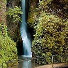 Dyserth Falls by davidrhscott