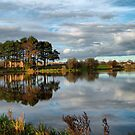Reflections. by Irene  Burdell