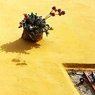 Yellow by aleksandra15