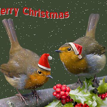 Bobbin' Robins by KrysBailey