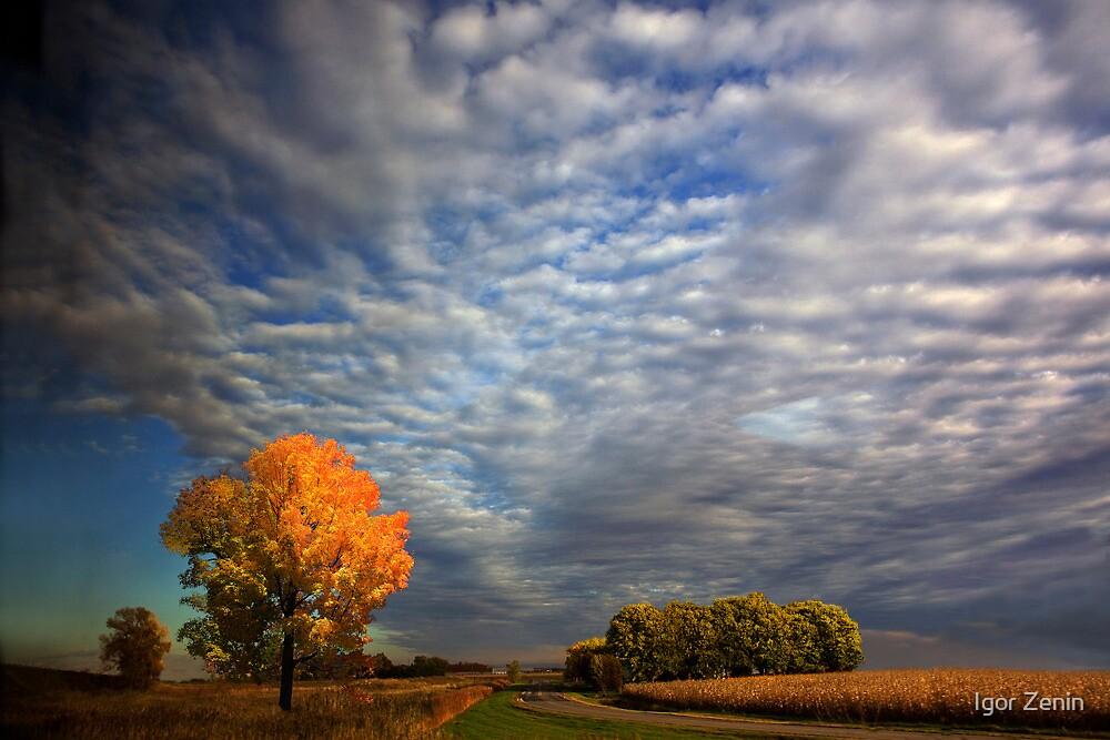 Under the Sky by Igor Zenin