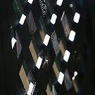 Checkerboard Web by April Johnson