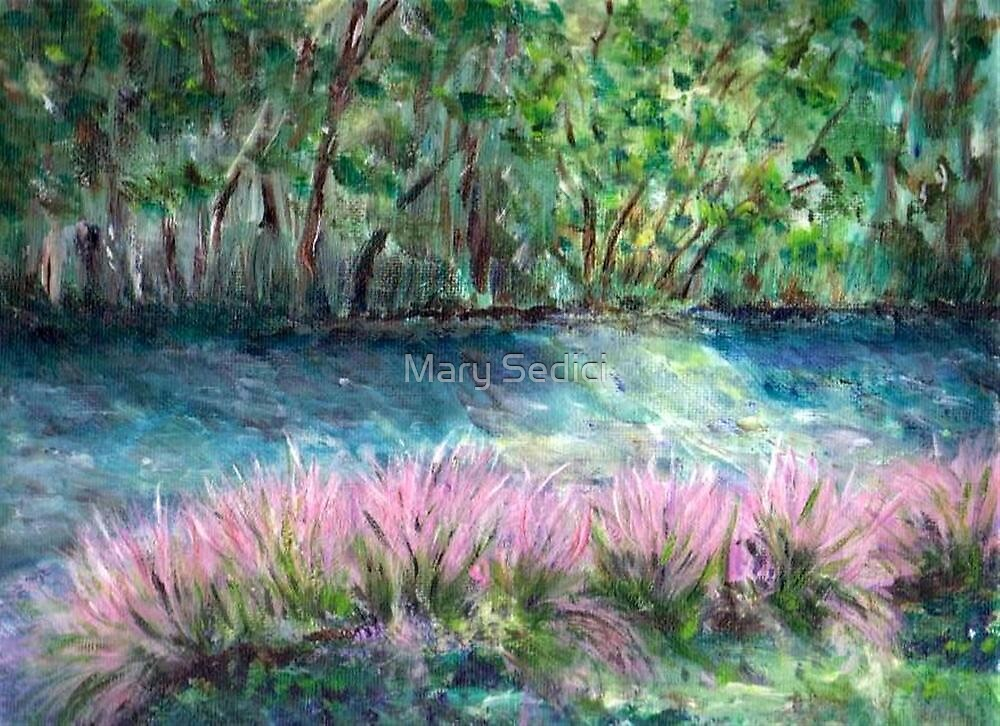 Pink Waterfront by Mary Sedici