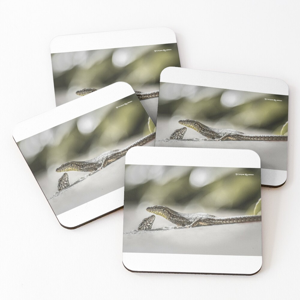 The charming lizards Coasters (Set of 4)