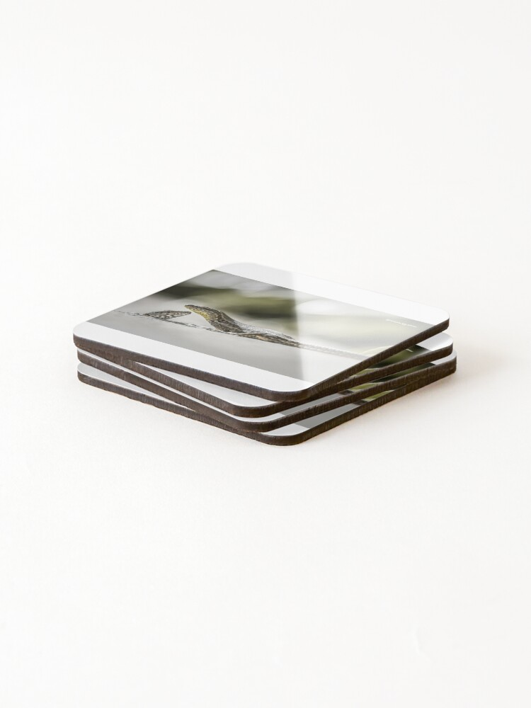 Alternate view of The charming lizards Coasters (Set of 4)