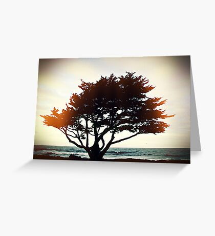 the warmth of this night glows with my soul Greeting Card