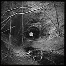 The Tunnel by Alice  Teeple