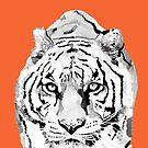 Tiger Orange by christinahewson