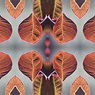 Royal purple smoke trees - 2019 by Gwenn Seemel