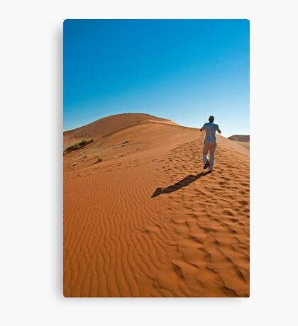 To the top! Canvas Print