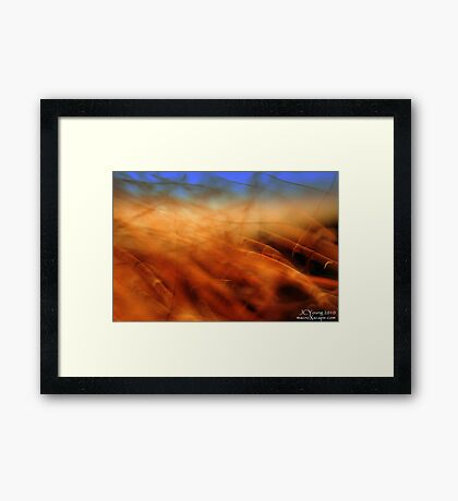 Last Remnants of Fall Framed Print