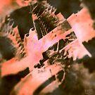 dragon 16 by Anders Lidholm