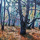 'Woods (A Clearing)' by Jerry Kirk