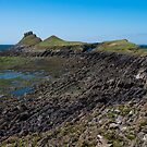 Worm's Head, Gower by Anita Harris