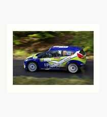 Rally of France 2010 Kuipers D. Art Print