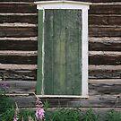 Western Window by Bernadette Watts
