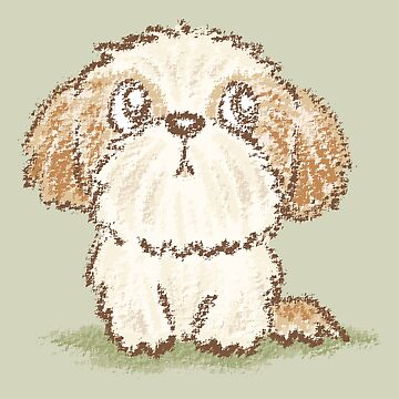 Shih Tzu puppy by sanogawa