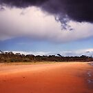 Apocalyptic Beach by James Cole